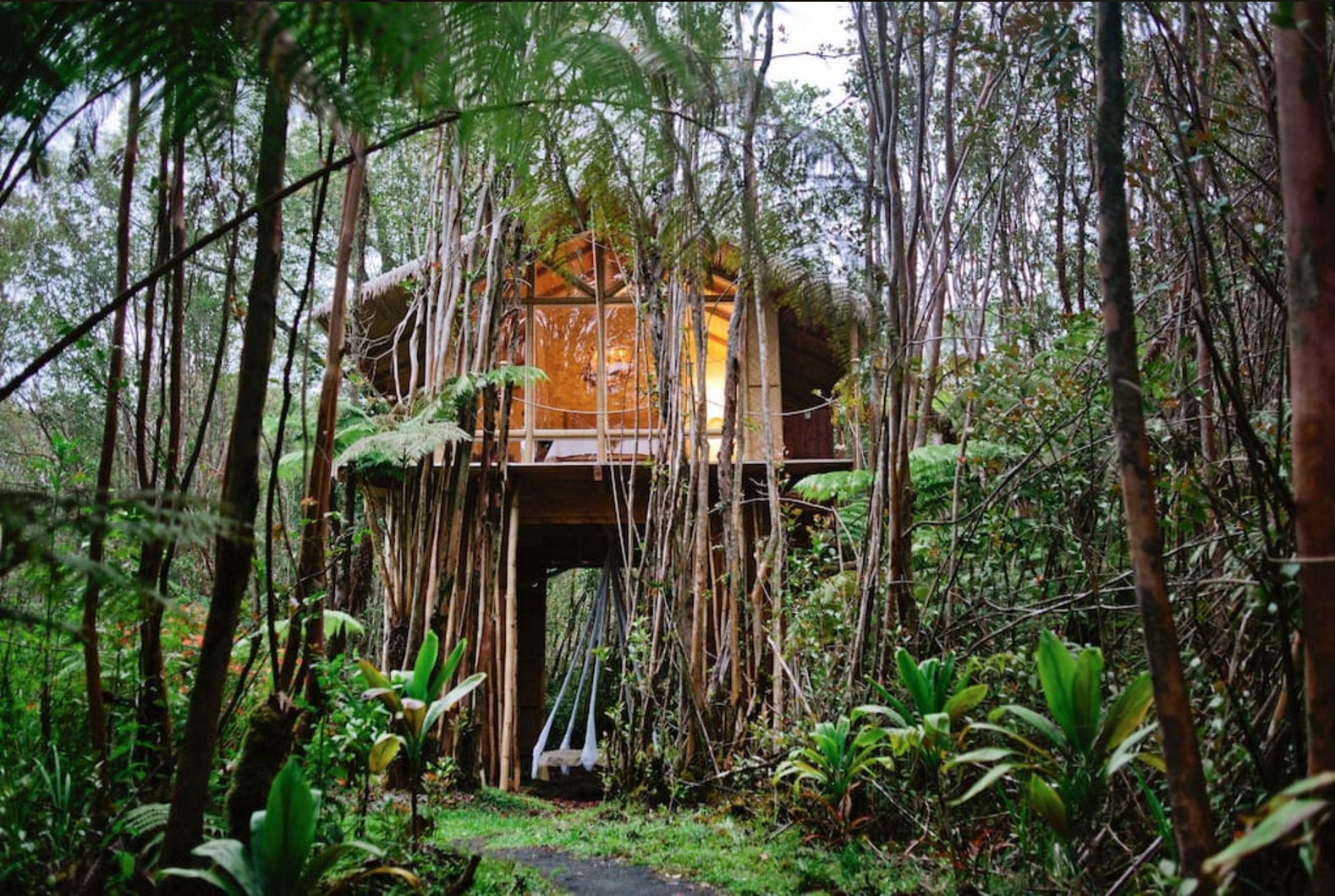 domek na drzewie Hawaje